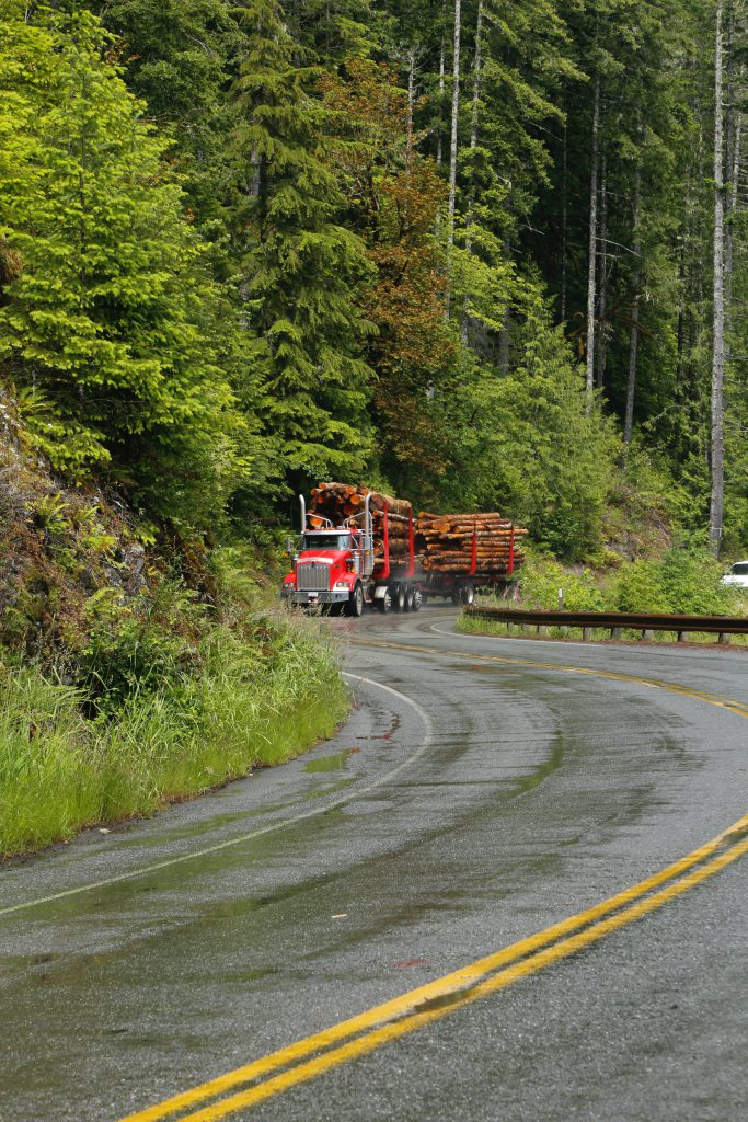 Castle Rock is at the heart of Washington timber country in the Pacific temperate rain forest.